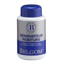 RENOVATEUR-PEINTURE-94396
