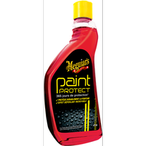 Paint-protect-MEGUIRRS-230725